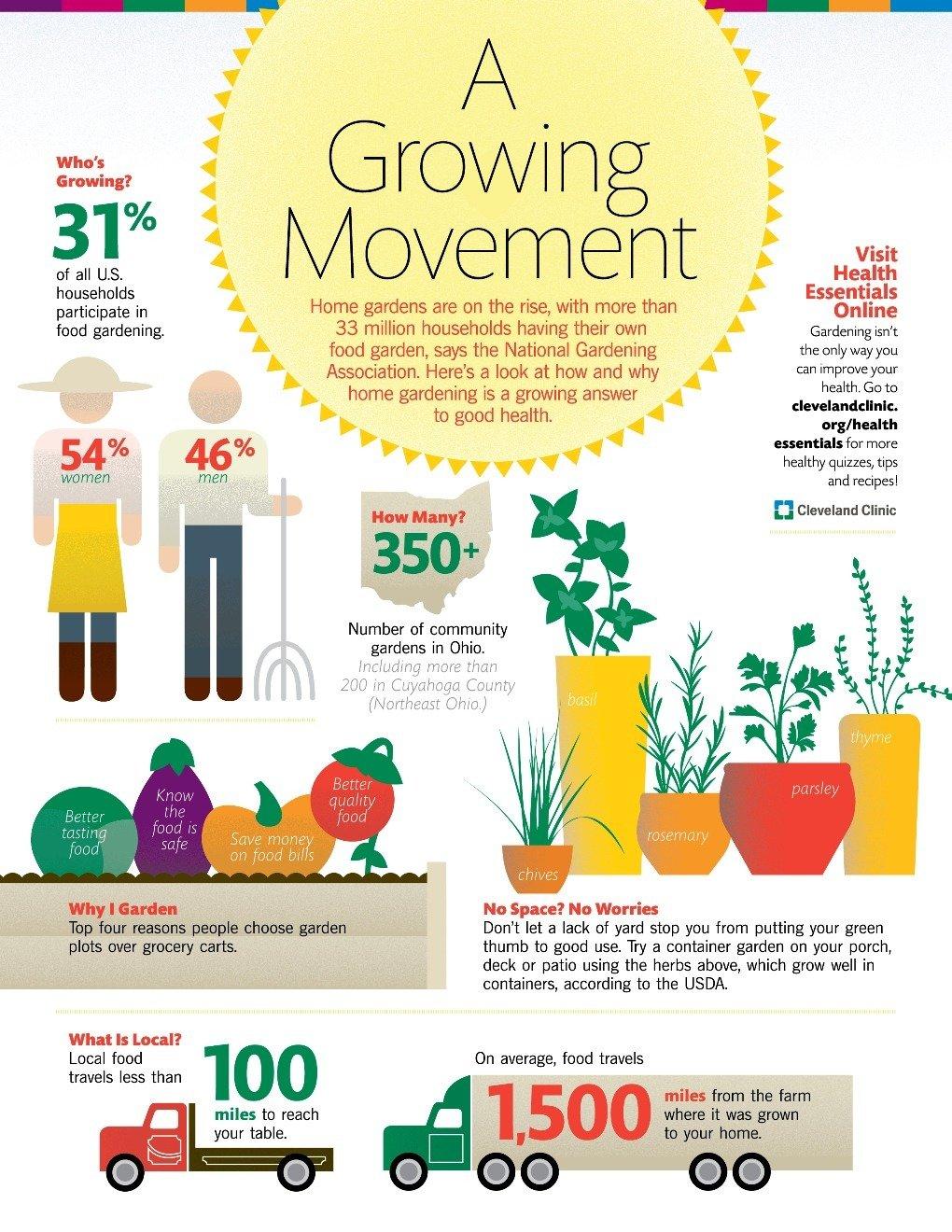 growing trend of home gardening