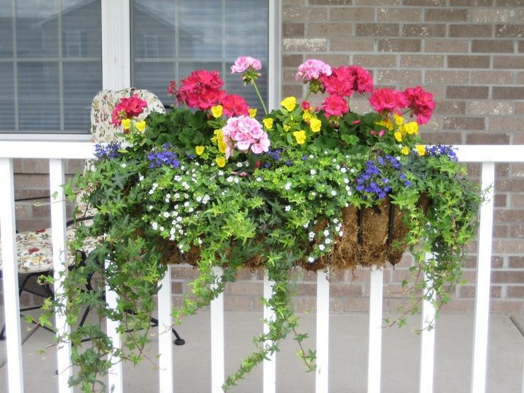 porch planting