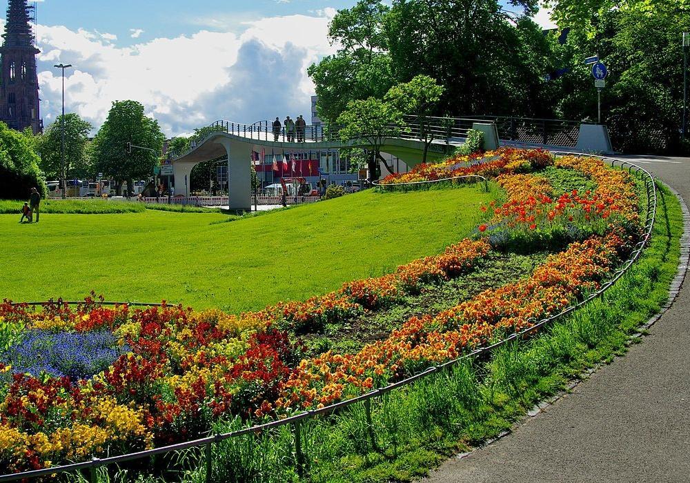 verge garden ideas