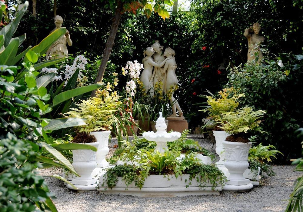 garden shade plants