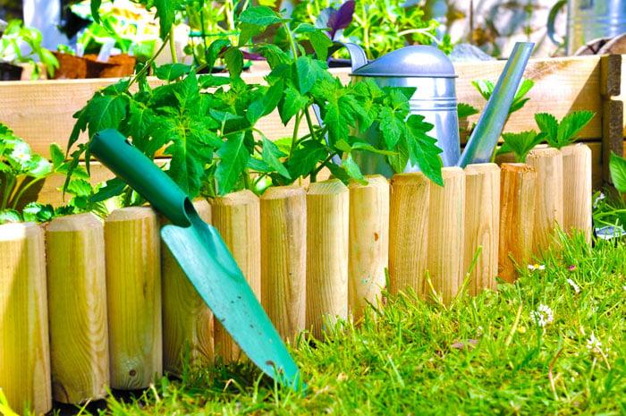 Treated Wood. Garden Edging