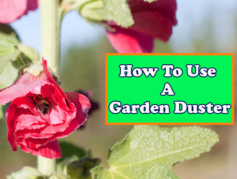 How To Use A Garden Duster