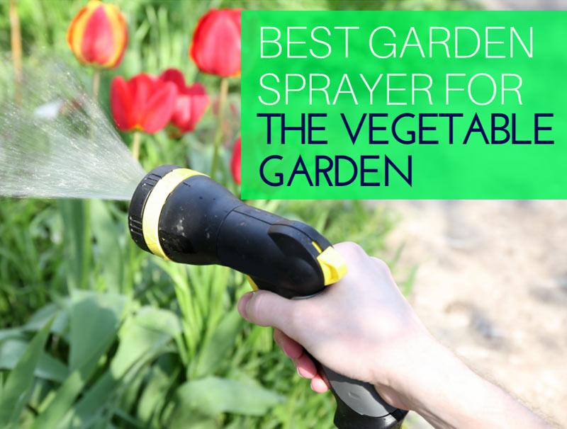 Best Garden Sprayer For The Vegetable Garden