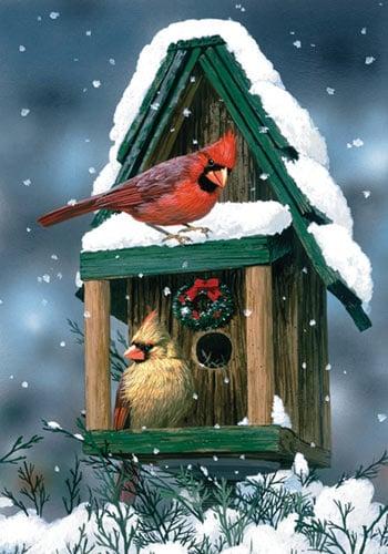 Toland - Cardinals In Snow