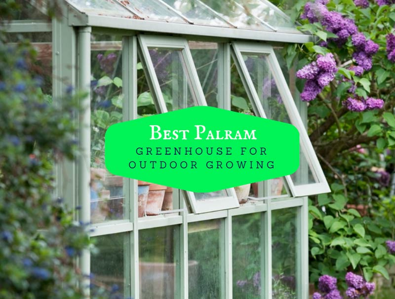 Best Palram Greenhouse For Outdoor Growing