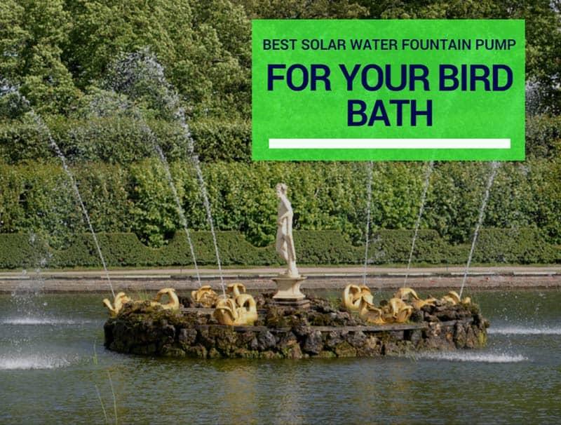 Best Solar Water Fountain Pump For Your Bird Bath