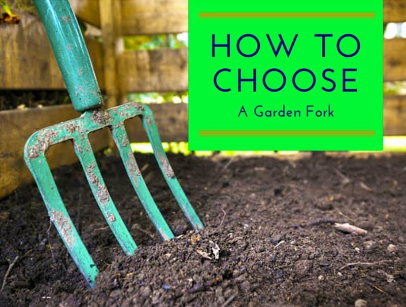 How To Choose A Garden Fork
