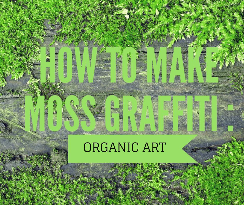How To Make Moss Graffiti Organic Art