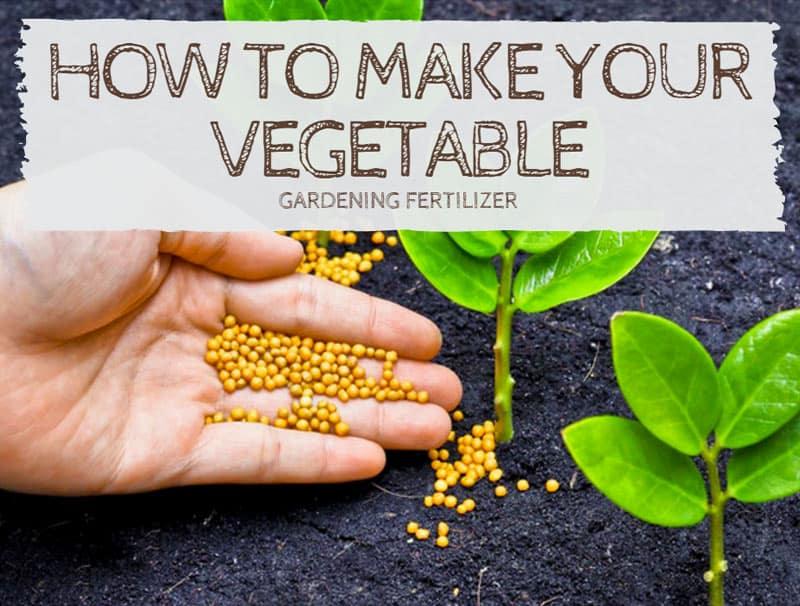 How to make your vegetable gardening fertilizer