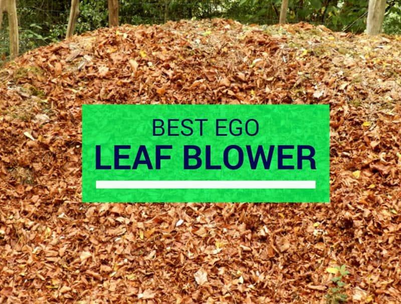 best ego leaf blower reviews
