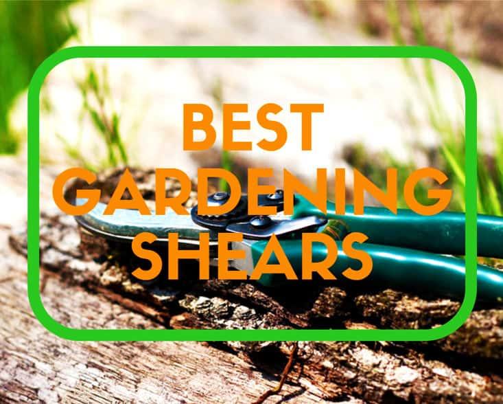 best gardening shears reviews