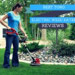 best toro electric weed eater reviews