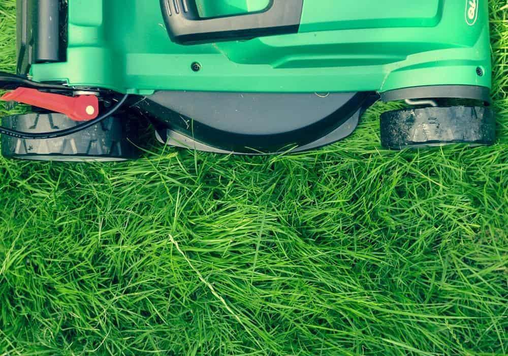 best mulching mower