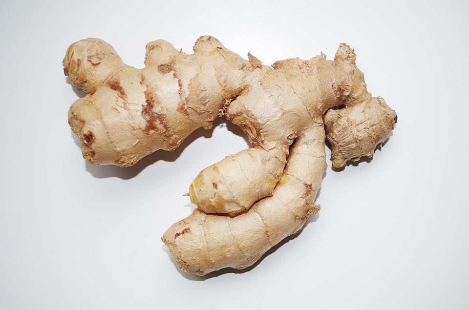 growing ginger
