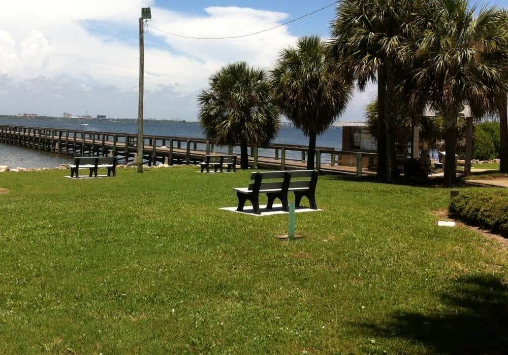 best grass for Florida