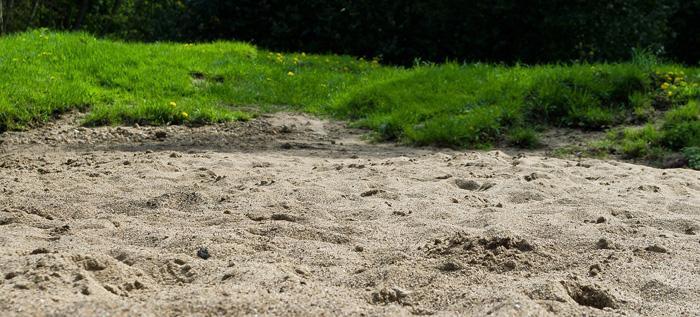 best grass for sandy soil