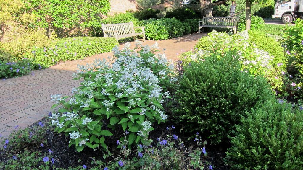 Elegant Garden Design Ideas