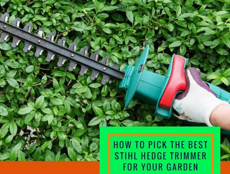 stihl hedge trimmer