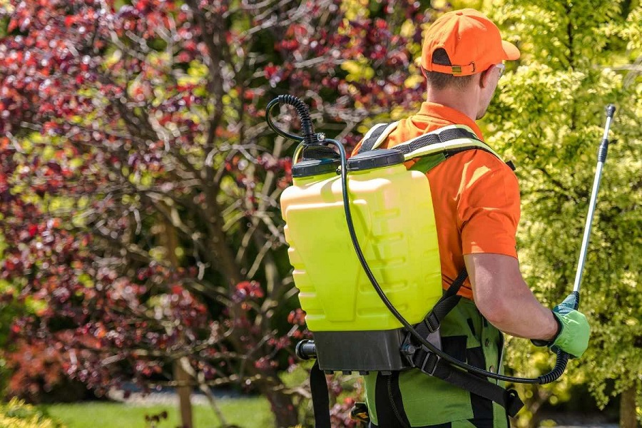 Backpack Sprayer For Home Use Reviewed