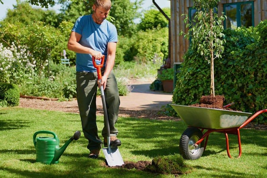 Garden Spades And Shovels Reviewed