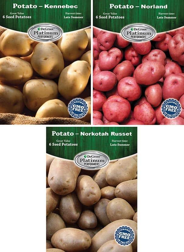 PO100 potato assortment