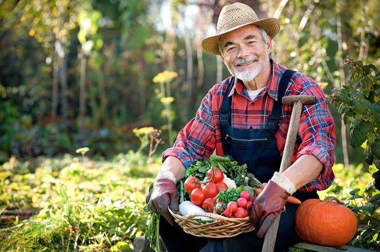 farmer with fresh vegetables