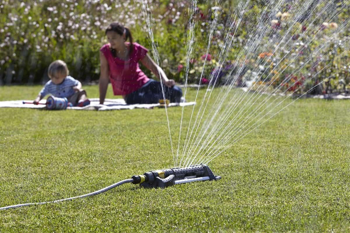 Best Sprinkler for your Vegetable Garden